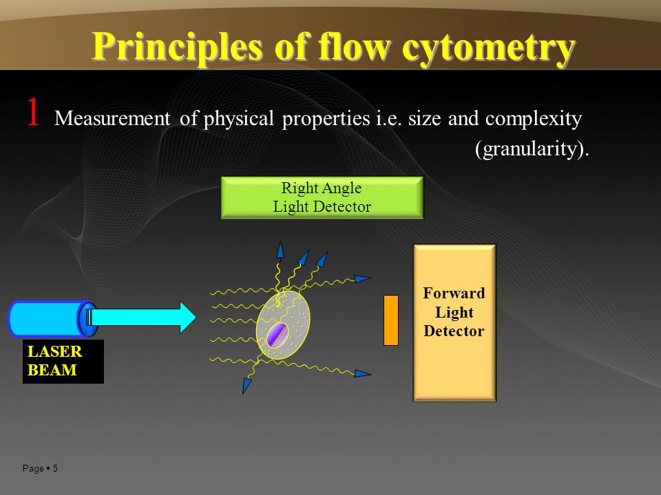 Principles of flow cytometry Forward Light Detector