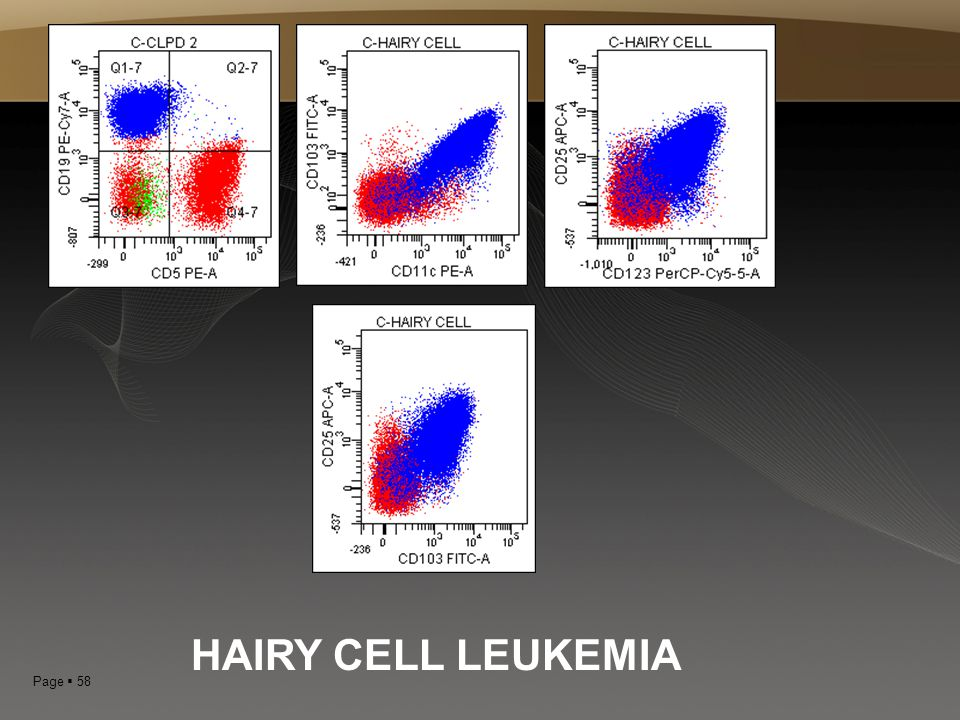 HAIRY CELL LEUKEMIA