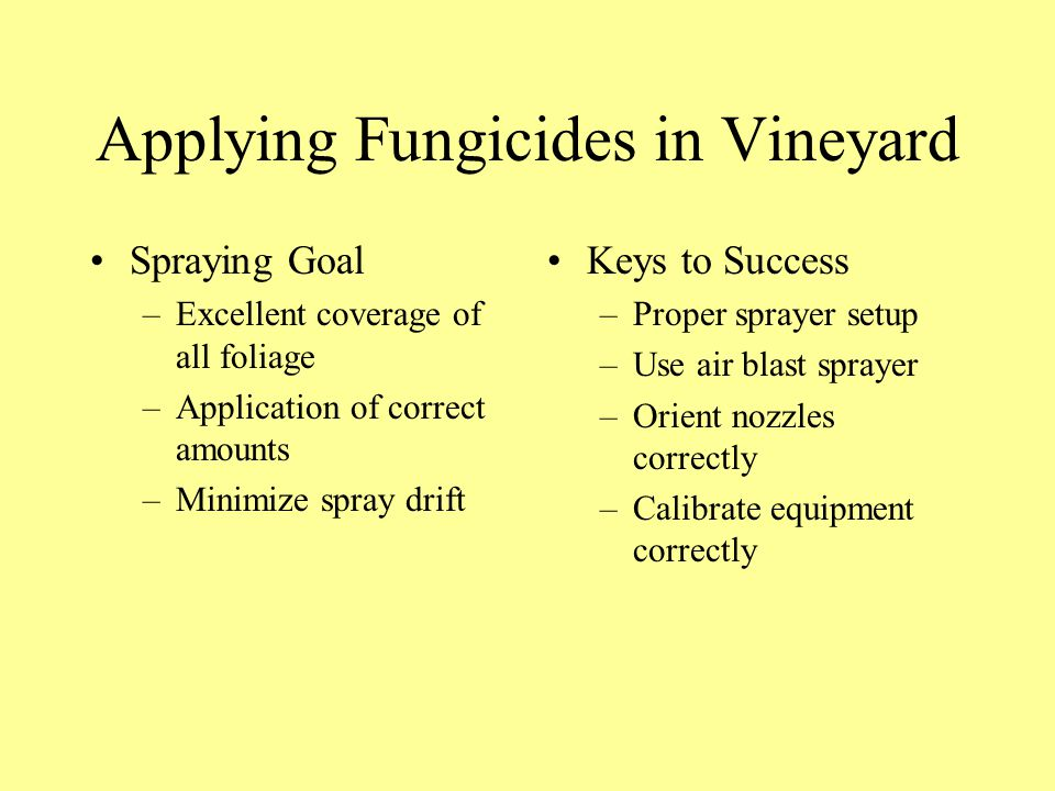 Applying Fungicides in Vineyard