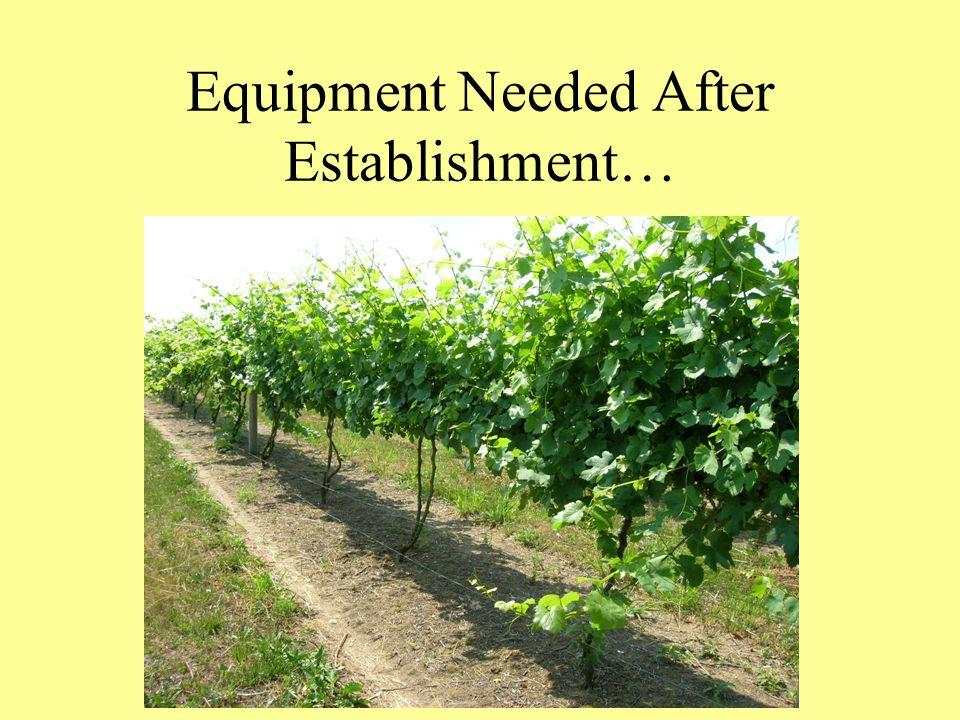 Equipment Needed After Establishment…