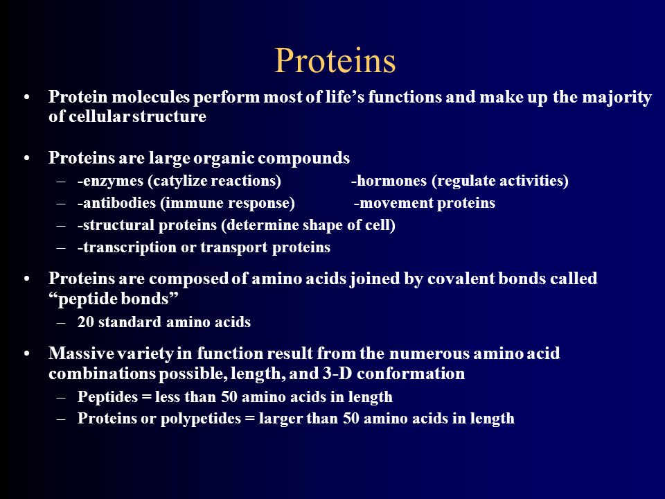 Proteins Protein molecules perform most of life's functions and make up the majority of cellular structure.