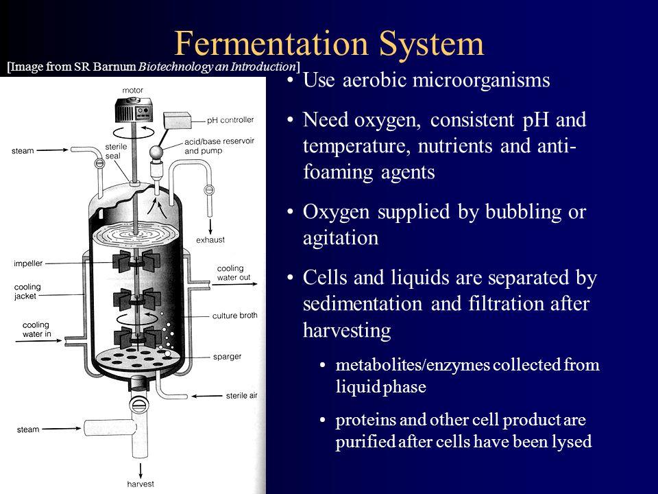 Fermentation System Use aerobic microorganisms