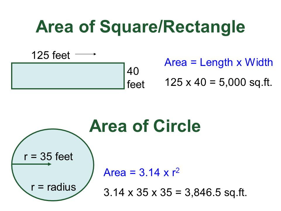 Area of Square/Rectangle
