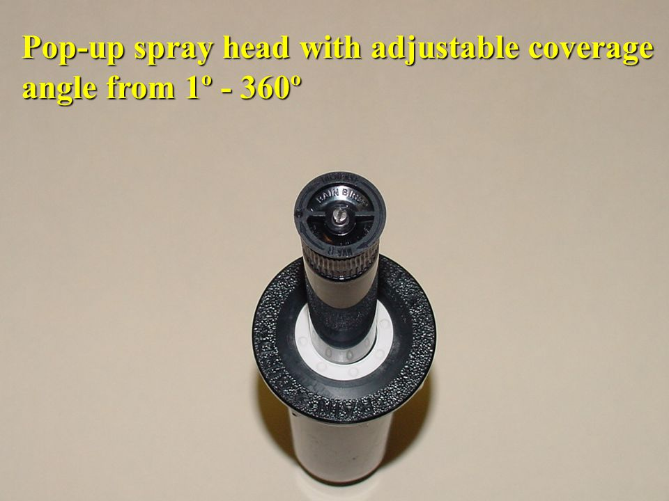Pop-up spray head with adjustable coverage
