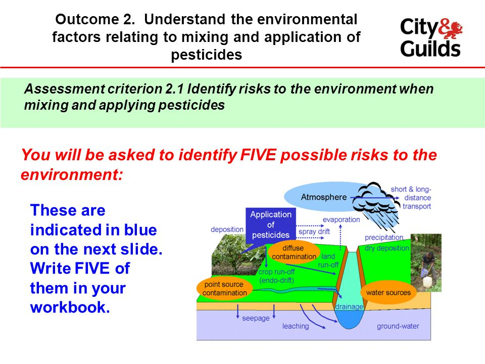 You will be asked to identify FIVE possible risks to the environment: