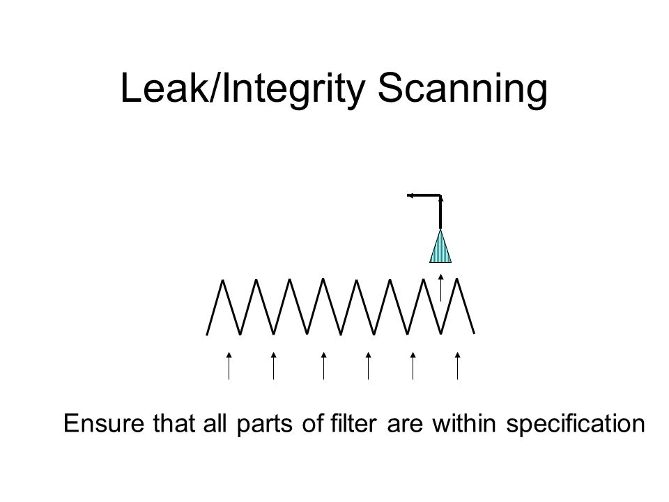 Leak/Integrity Scanning