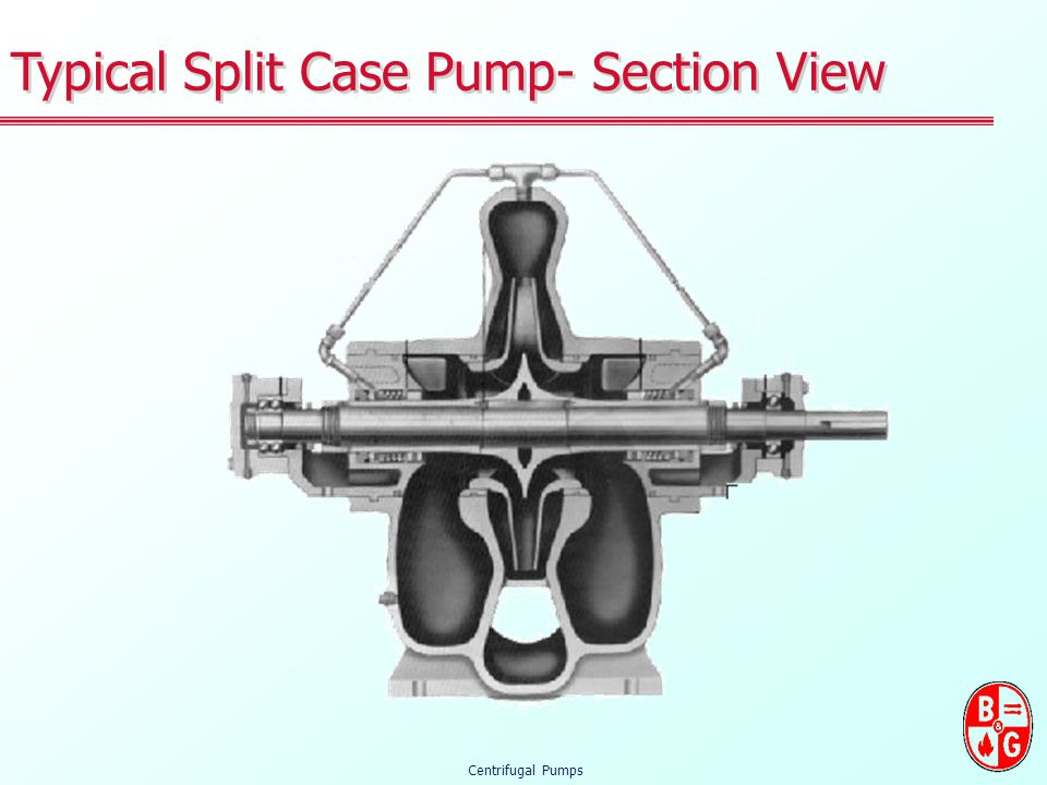 Typical Split Case Pump- Section View