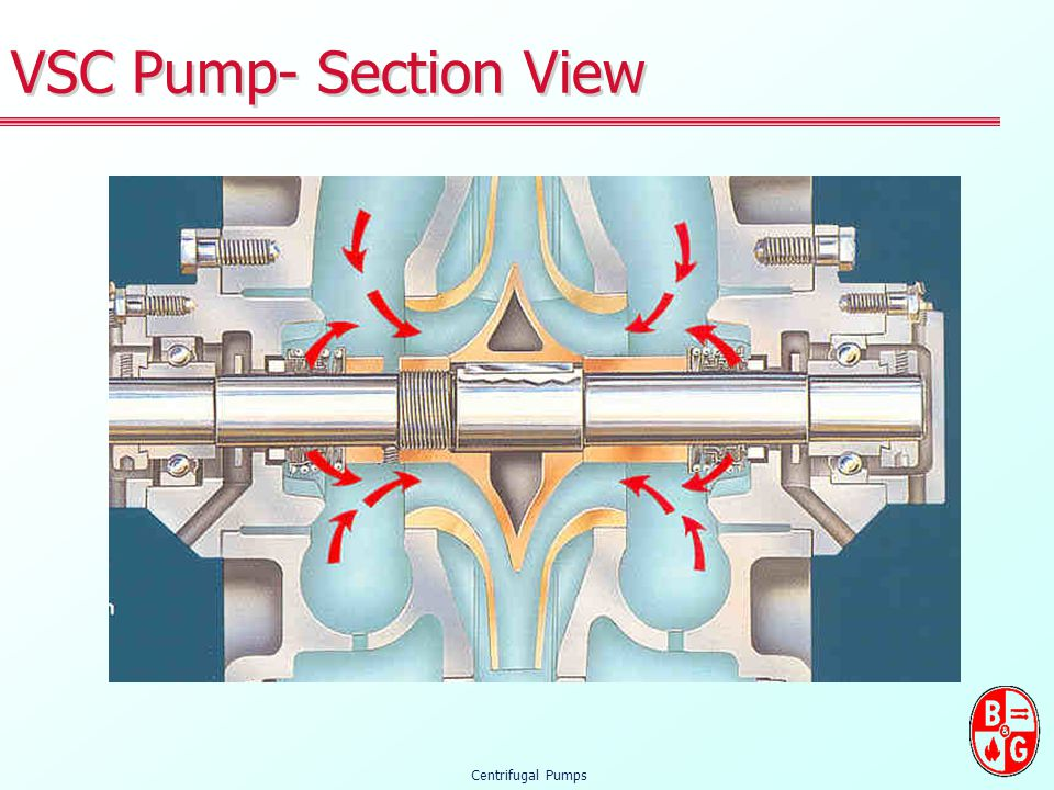 VSC Pump- Section View Centrifugal Pumps