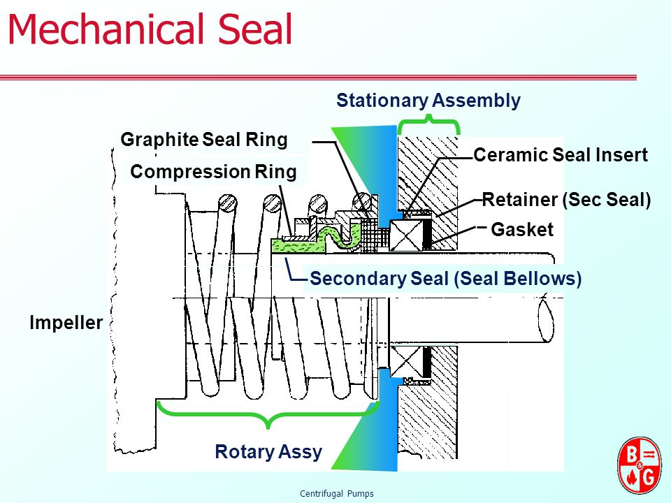 Secondary Seal (Seal Bellows)