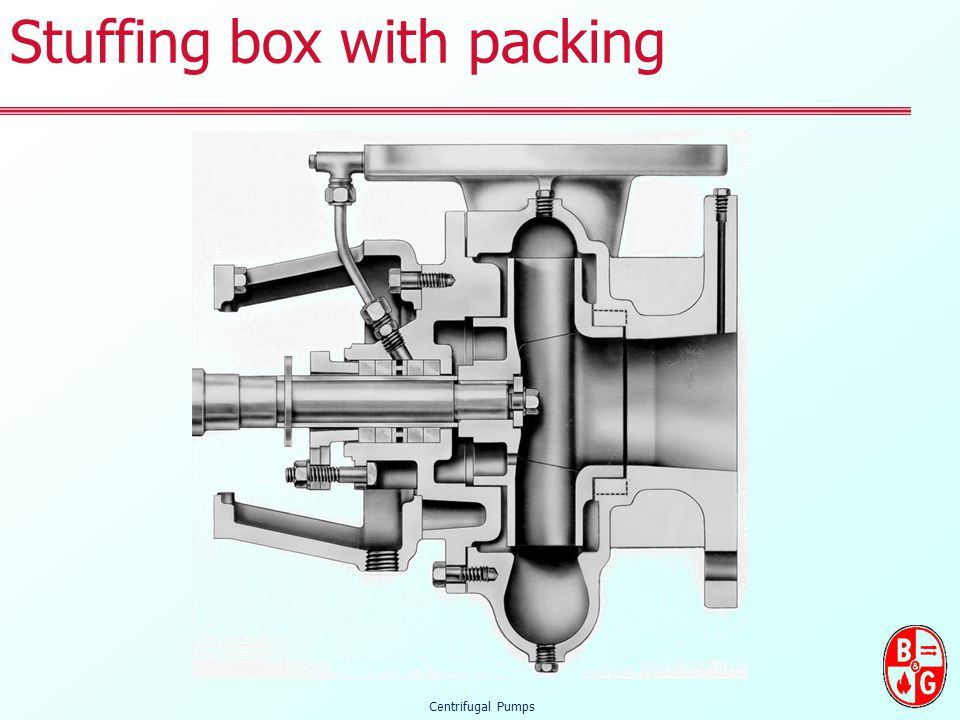 Stuffing box with packing