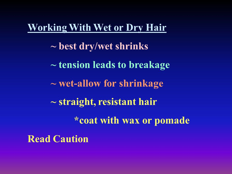 Working With Wet or Dry Hair