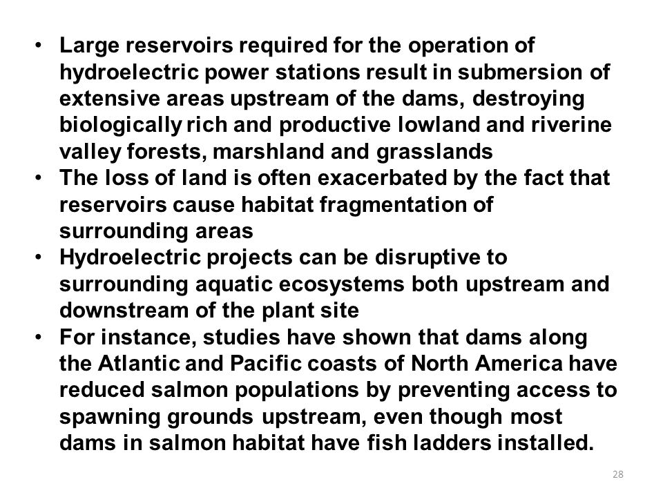 Large reservoirs required for the operation of hydroelectric power stations result in submersion of extensive areas upstream of the dams, destroying biologically rich and productive lowland and riverine valley forests, marshland and grasslands