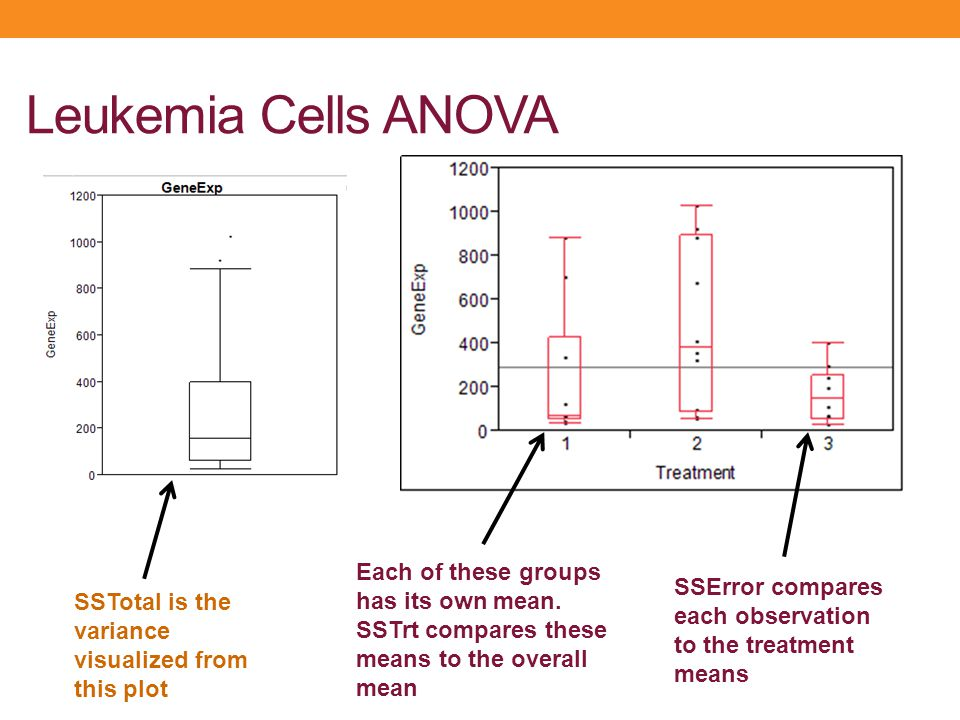 Leukemia Cells ANOVA Each of these groups has its own mean. SSTrt compares these means to the overall mean.