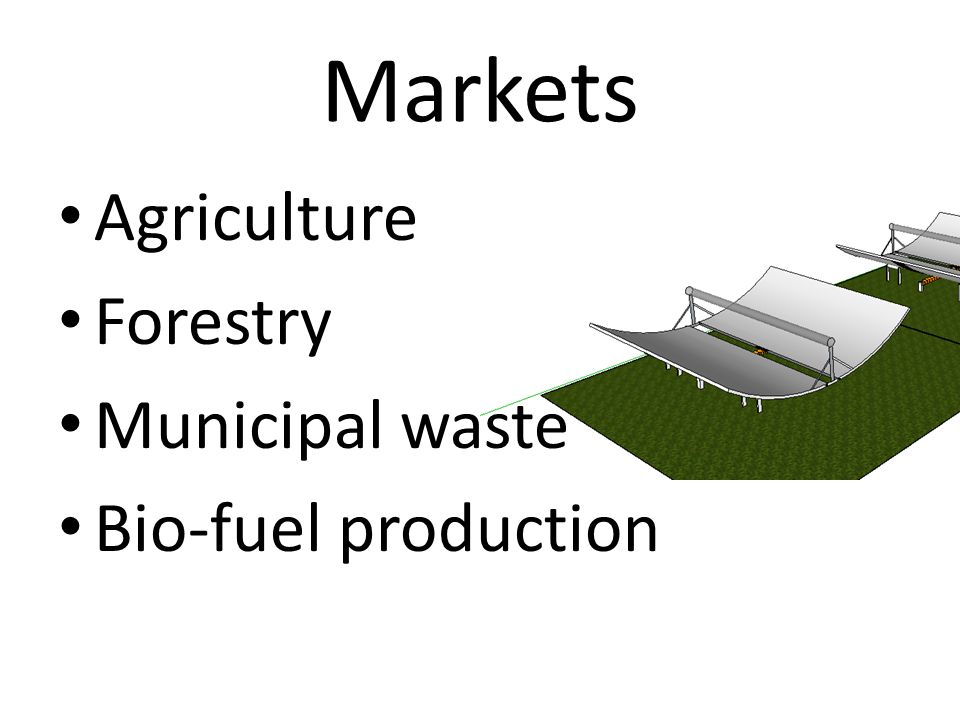 Markets Agriculture Forestry Municipal waste Bio-fuel production