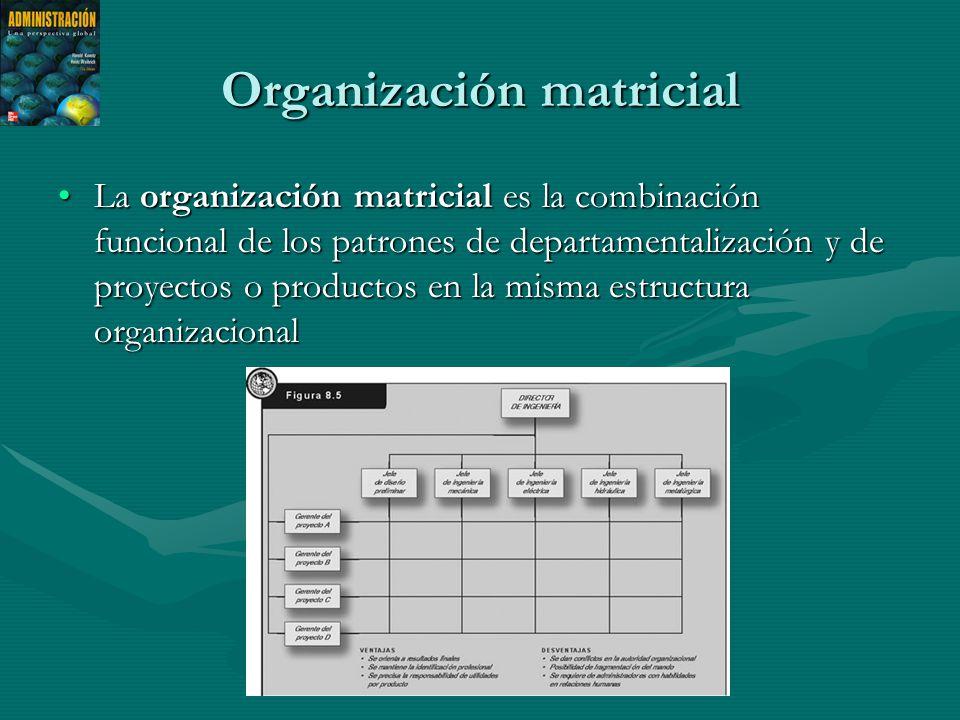 Organización matricial