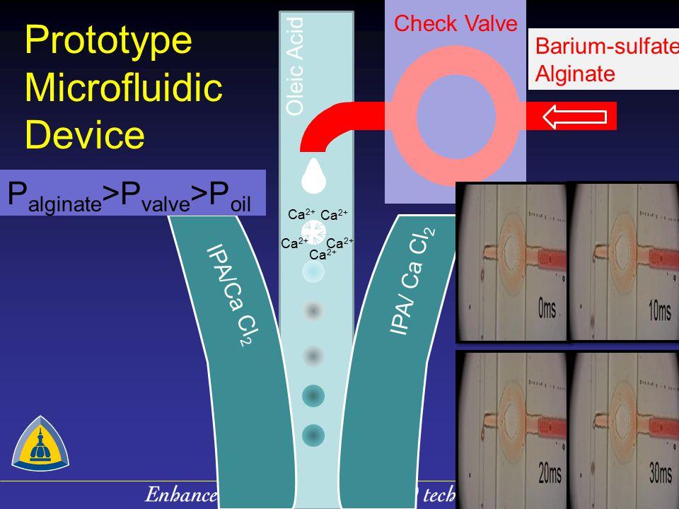 Prototype Microfluidic Device