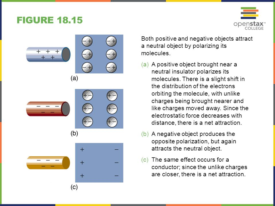 Figure 18.15 Both positive and negative objects attract a neutral object by polarizing its molecules.