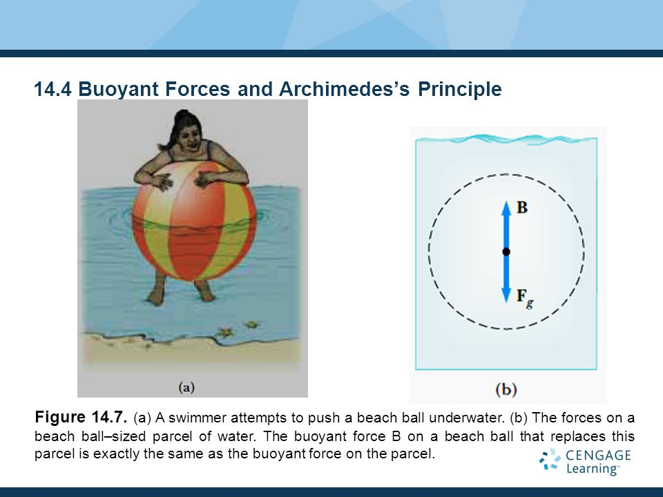 14.4 Buoyant Forces and Archimedes's Principle