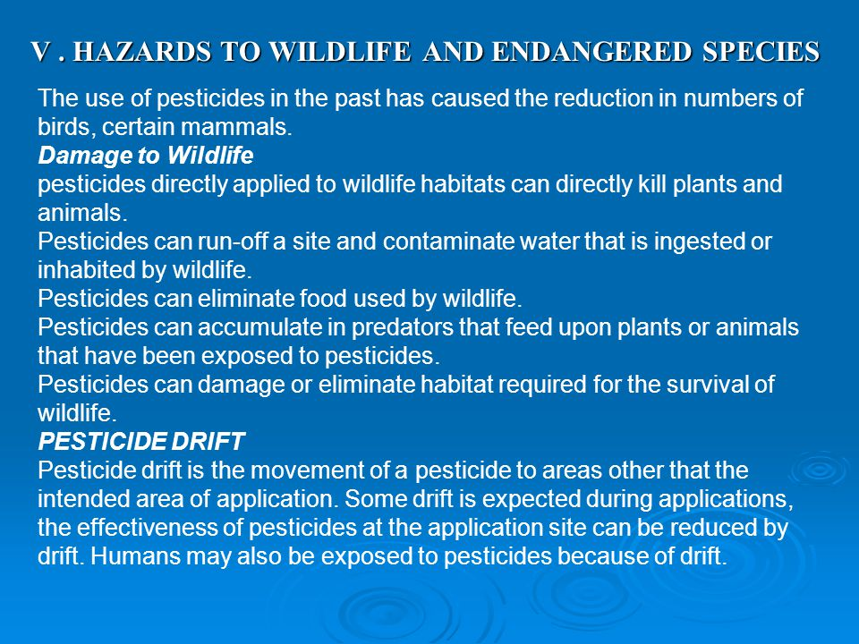 V . HAZARDS TO WILDLIFE AND ENDANGERED SPECIES