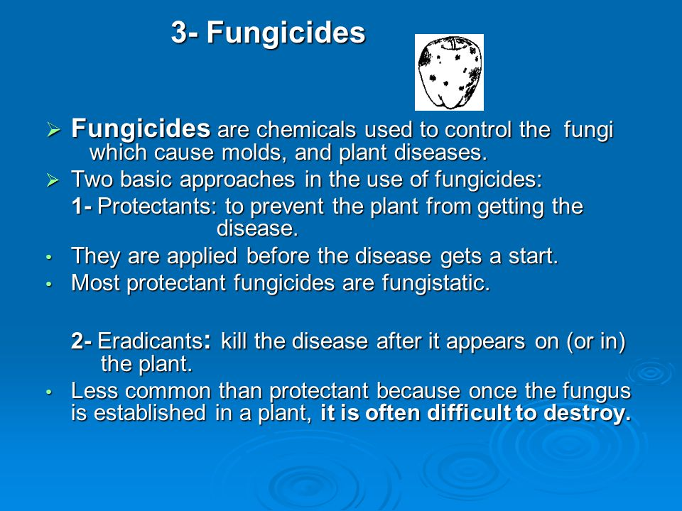 3- Fungicides Fungicides are chemicals used to control the fungi which cause molds, and plant diseases.