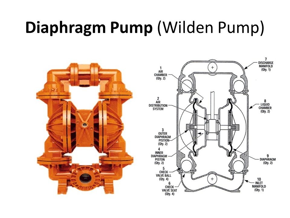 Pumps and pumping theory ppt download 67 diaphragm pump wilden pump sciox Image collections
