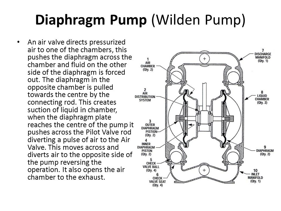 Pumps and pumping theory ppt download 68 diaphragm sciox Image collections
