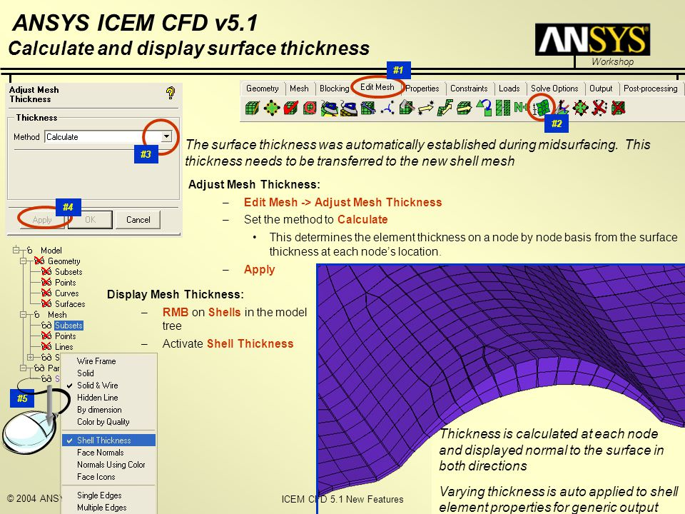 Calculate and display surface thickness