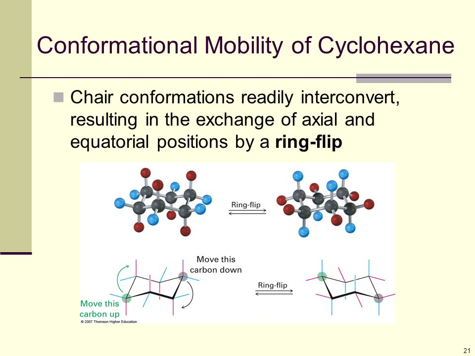Conformational Mobility of Cyclohexane