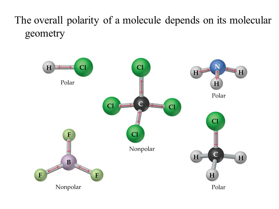 The overall polarity of a molecule depends on its molecular geometry