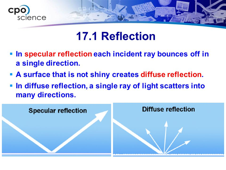 17.1 Reflection In specular reflection each incident ray bounces off in a single direction. A surface that is not shiny creates diffuse reflection.