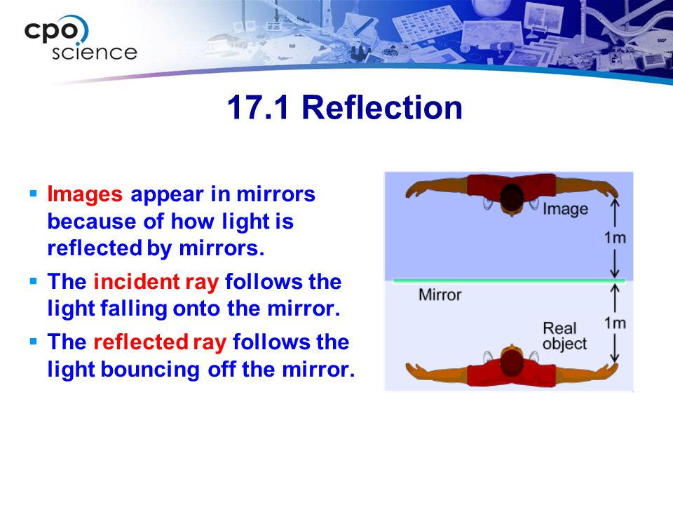 17.1 Reflection Images appear in mirrors because of how light is reflected by mirrors. The incident ray follows the light falling onto the mirror.