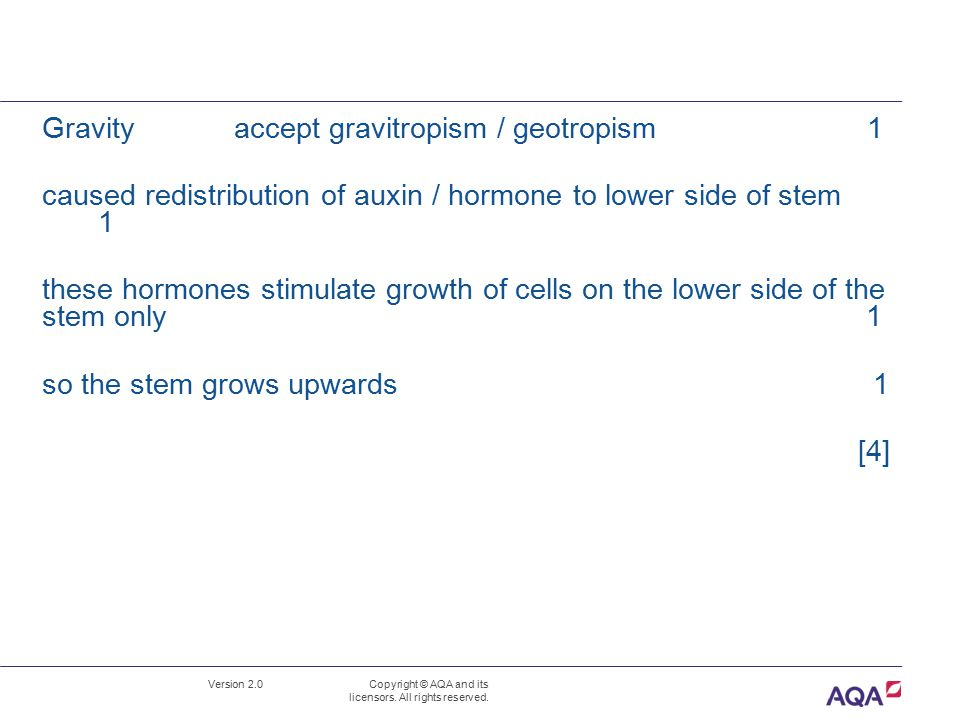 Gravity accept gravitropism / geotropism 1