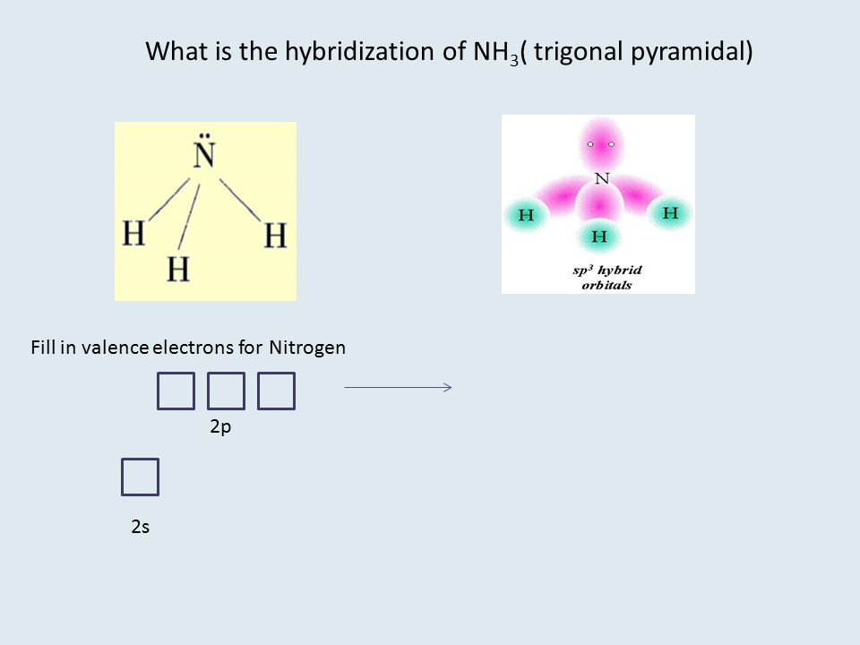 What is the hybridization of NH3( trigonal pyramidal)