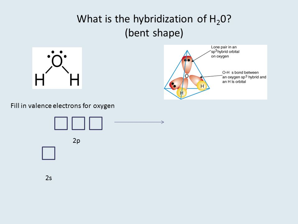 What is the hybridization of H20 (bent shape)
