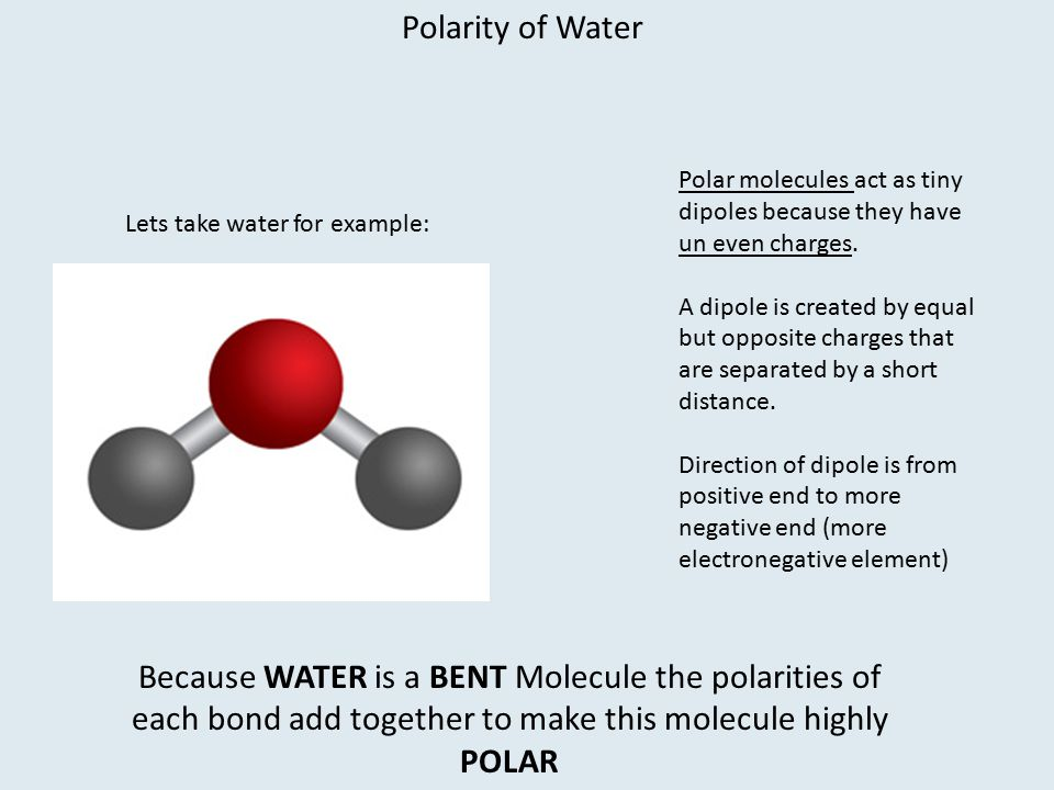 Polarity of Water Polar molecules act as tiny dipoles because they have un even charges.