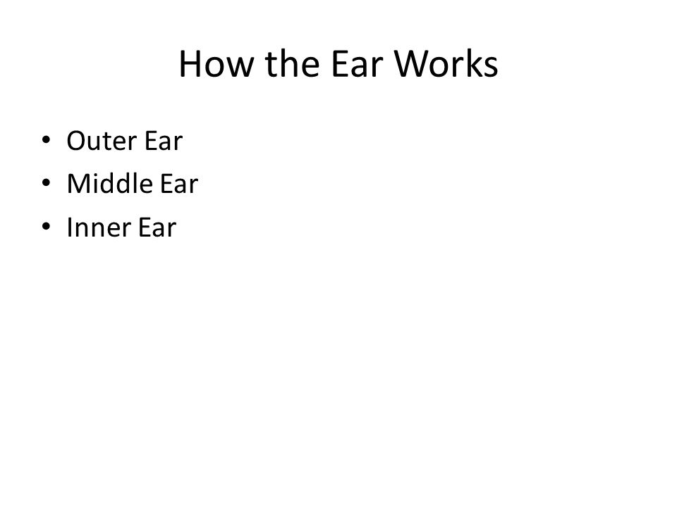 How the Ear Works Outer Ear Middle Ear Inner Ear