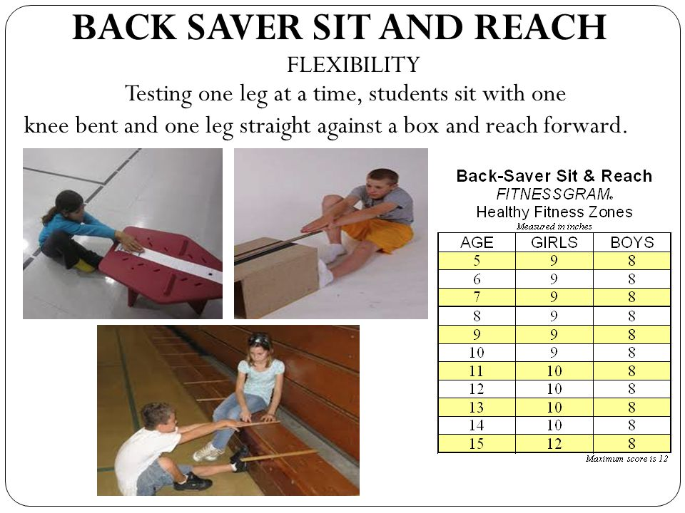 BACK SAVER SIT AND REACH