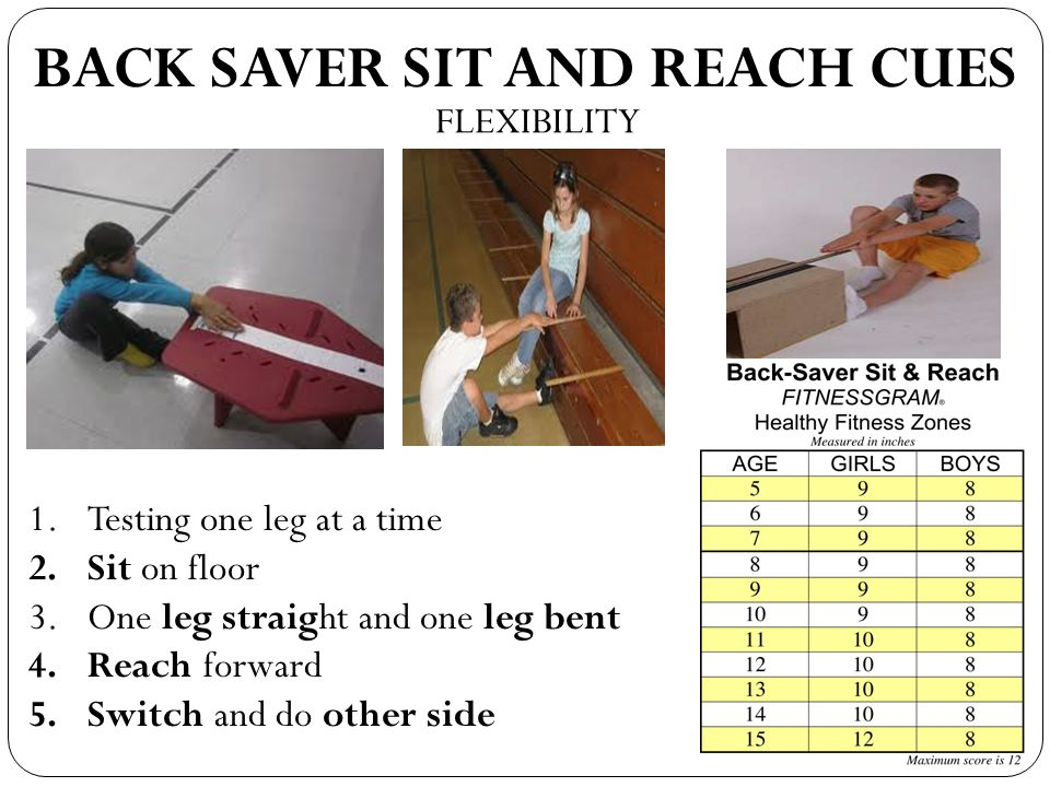 BACK SAVER SIT AND REACH CUES