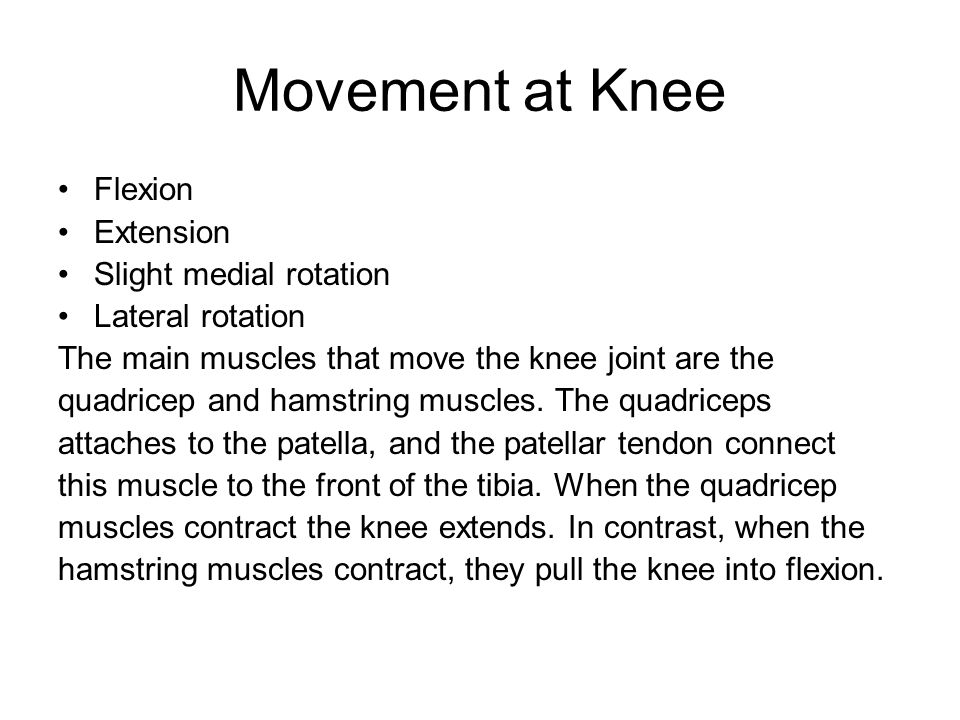 Movement at Knee Flexion Extension Slight medial rotation