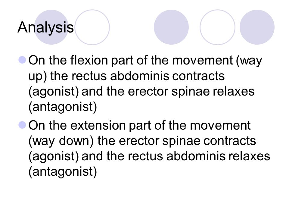 Analysis On the flexion part of the movement (way up) the rectus abdominis contracts (agonist) and the erector spinae relaxes (antagonist)