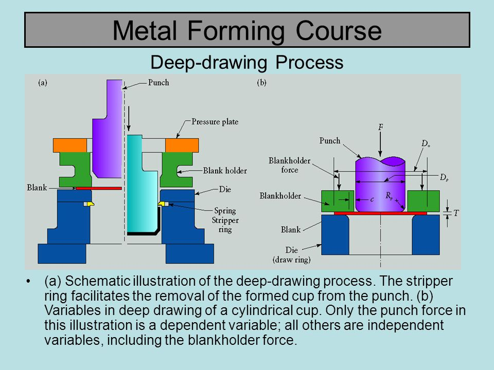 Metal Forming Course Deep-drawing Process