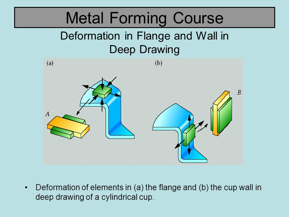 Deformation in Flange and Wall in Deep Drawing