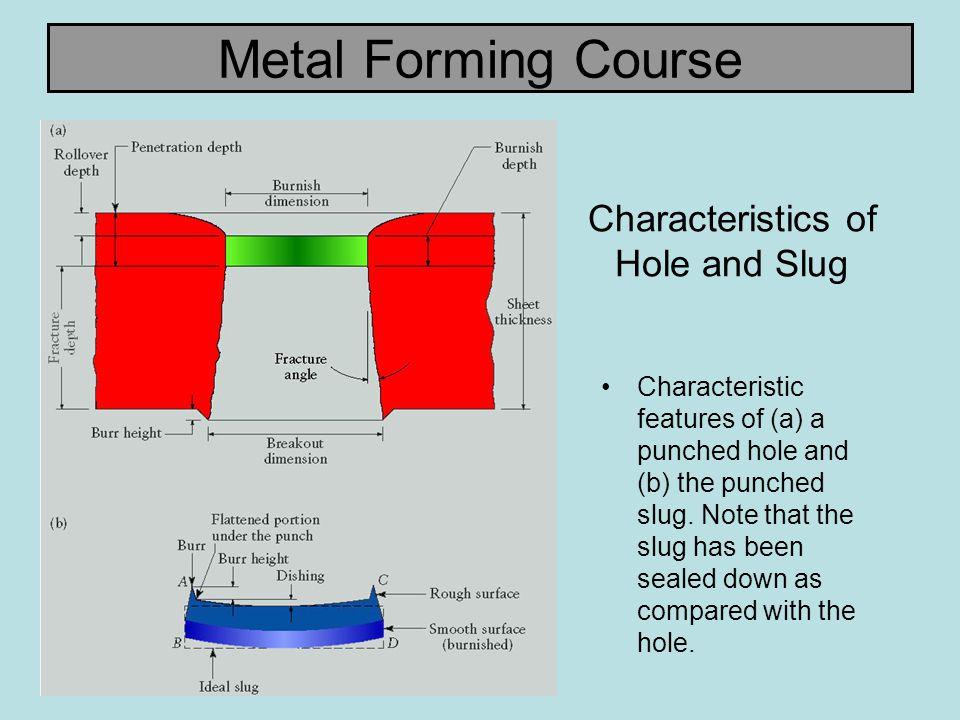 Characteristics of Hole and Slug