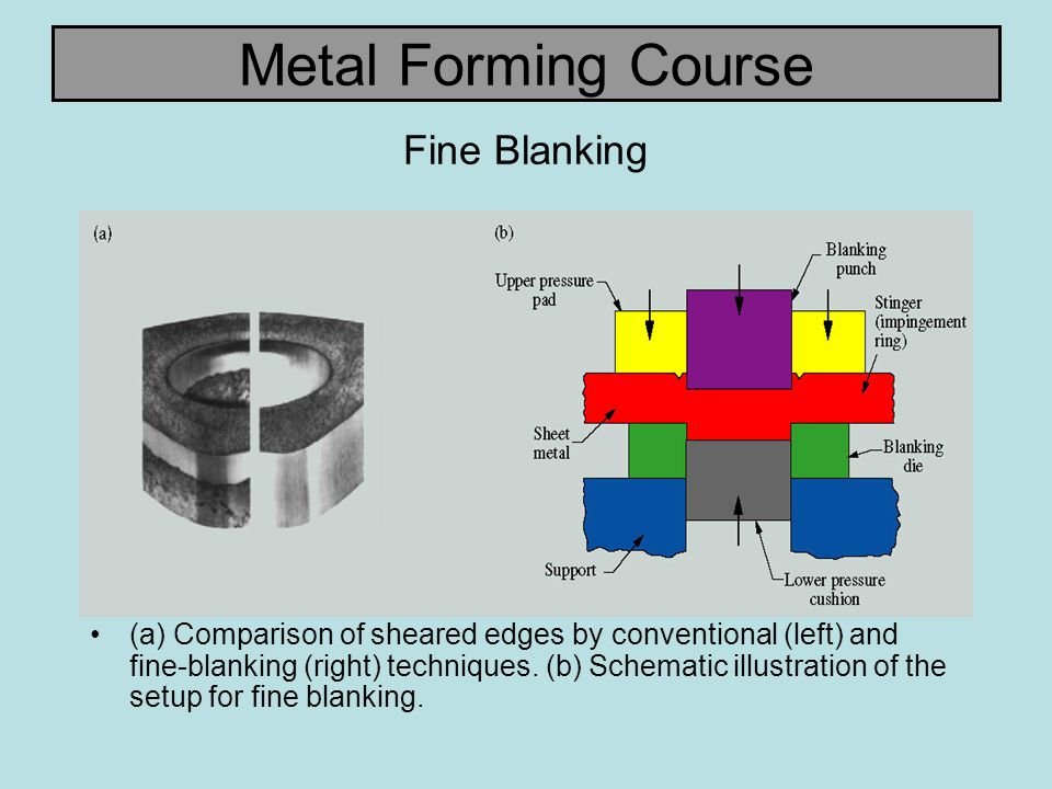 Metal Forming Course Fine Blanking