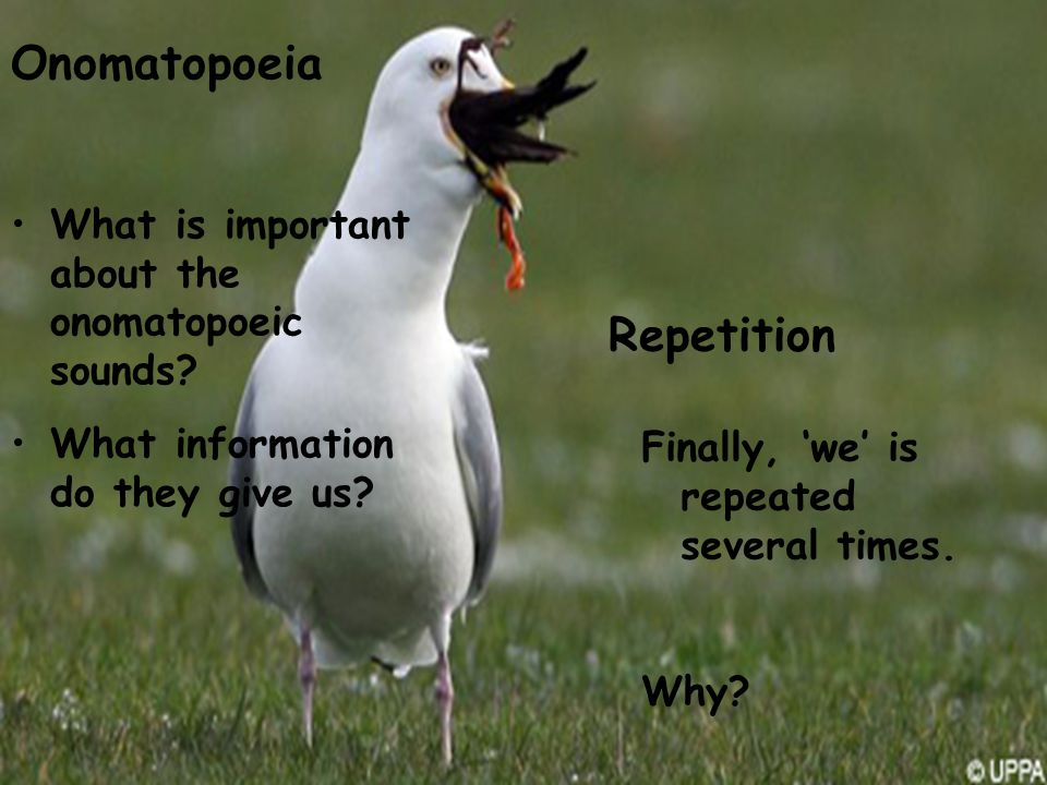 Onomatopoeia Repetition