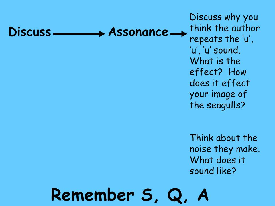 Remember S, Q, A Discuss Assonance