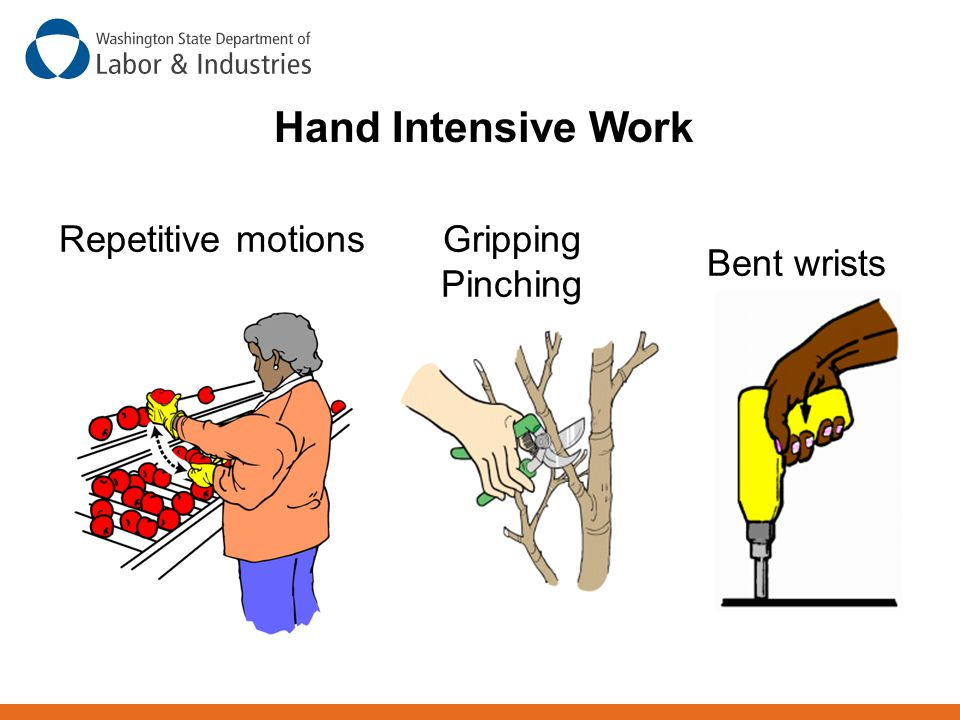 Hand Intensive Work Repetitive motions Gripping Pinching Bent wrists