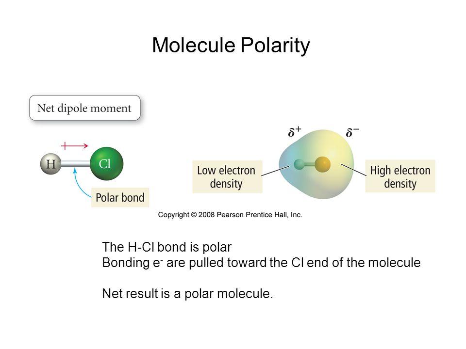 Molecule Polarity The H-Cl bond is polar