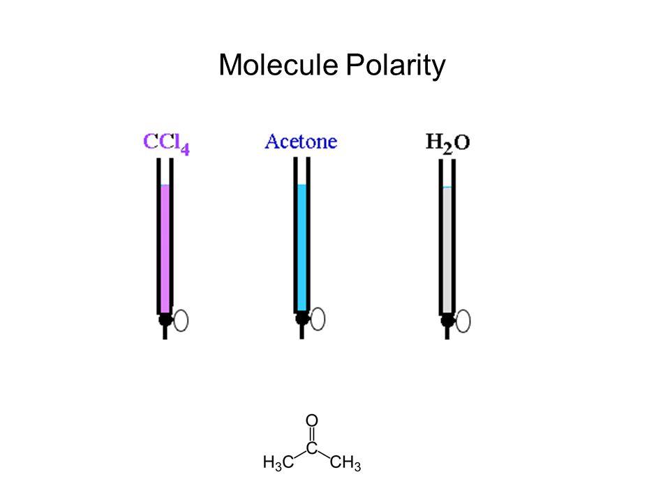 Molecule Polarity