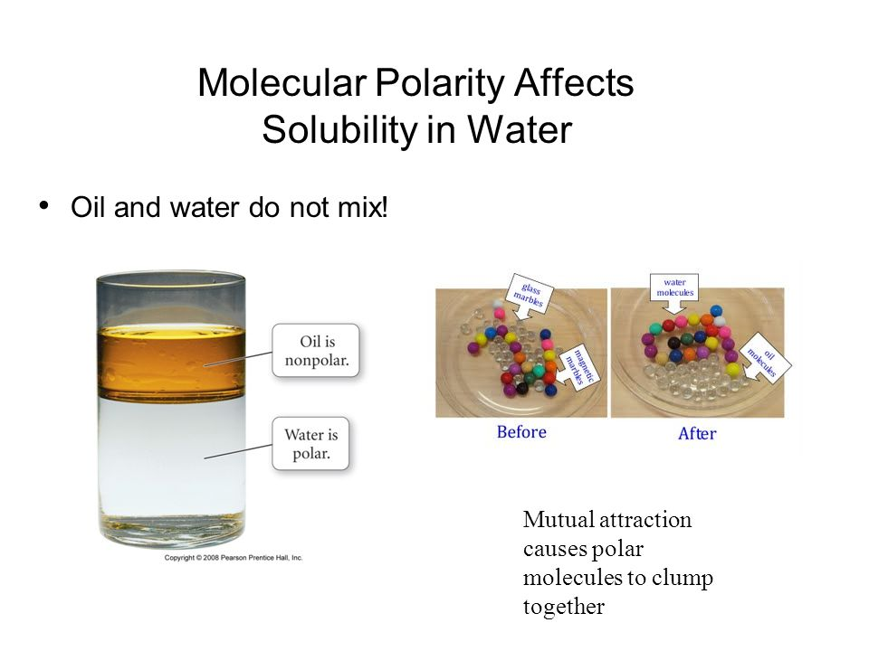 Molecular Polarity Affects Solubility in Water